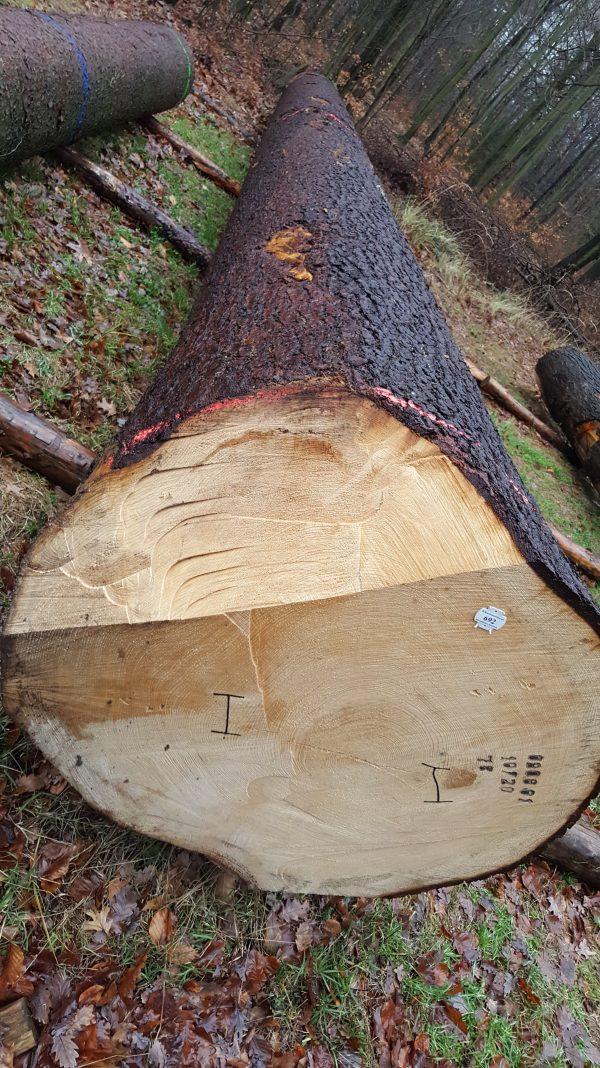Fichte-Fichtenholz-Holz Heart-Eigenschaften Baumart Verwendung Steckbrief